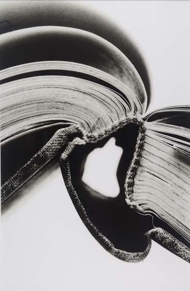 Book 29 Lith