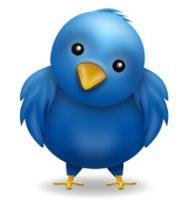 twitter_bird3